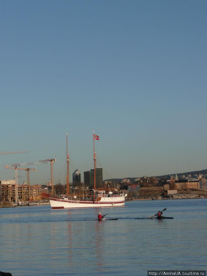 норвежцы плавают не реже, чем ходят на лыжах
