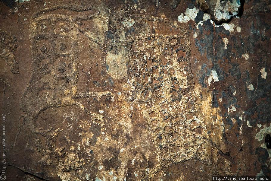 Изображение маралов с кольцами-бубликами на туловищах. В одной алтайской легенде говорится, что священные животные — лошадь и олень — доставляют людям на землю на своей шкуре прикрепленные зародыши домашнего скота.