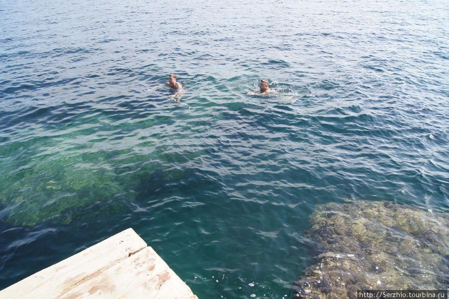 купаемся у бара, глубина метров 9