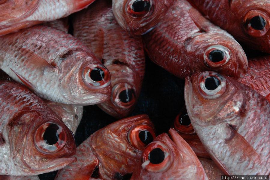 Остров Биак: рыбные рынки Остров Биак, Индонезия