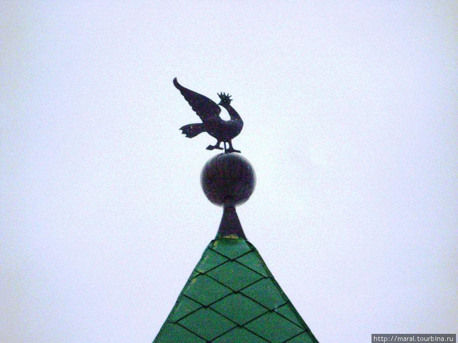 Сокол в княжеской короне — герб Суздаля