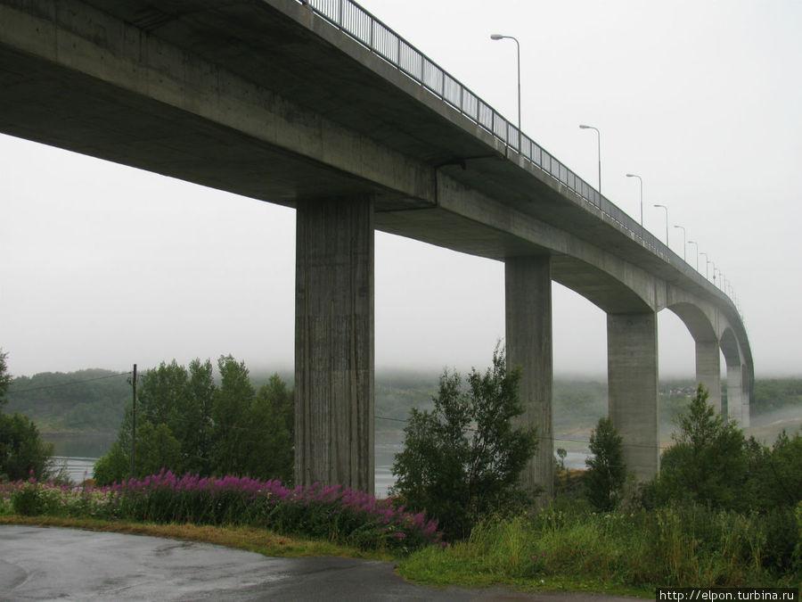 Наблюдать за водоворотами можно с моста над фьордом.