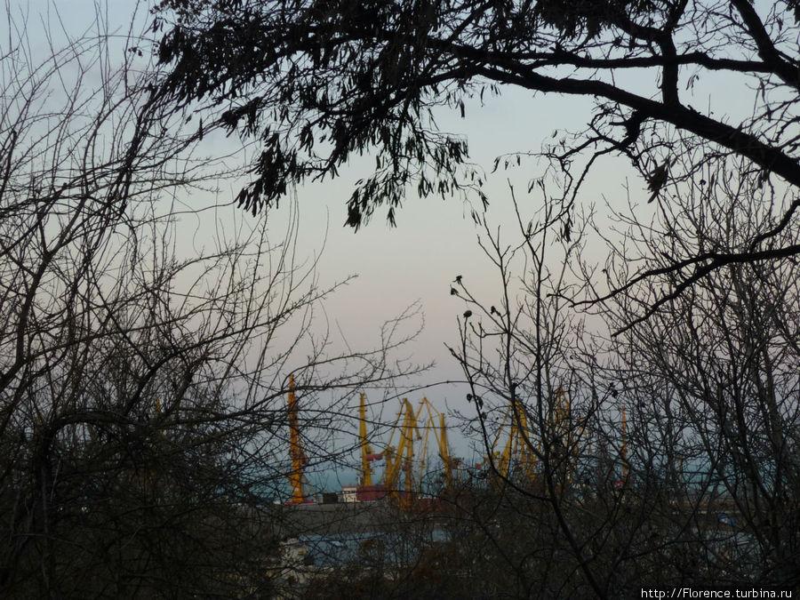 Вид от памятника на порт вечером