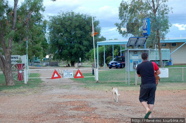 Полицейский уносит весёлого щенка домой.