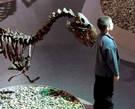 Как считают ученые, именно в окрестностях города Перми на притоках реки Кама в предгорьях Уральских гор в генной эволюции произошел переход к мутации, превратившей пресмыкающихся ящеров в млекопитающих