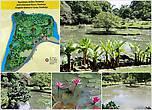 Украшением сада, несомненно является небольшой прудик, очертание которого почти с картографической точностью воспроизводит форму острова Шри-Ланка. А одинокое деревце на островке олицетворяет королевский город Канди