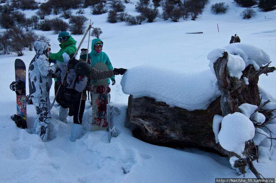 Гид показывает нам узоры из снега на дереве, зрелище неописуемое.