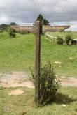 2.  Короткое время спустя начались работы по прокладке дороги через ферму к озеру. Задействована в этом была новозеландская армия, так что на все любопытные вопросы соседей семейство Александр отвечало, что армия облюбовала их ферму для проведения учений.   Появление  Хоббитона: -Почти год был потрачен на строительство полуторакилометровой дороги, которая должна была выдержать тонны груза. -Обустройство 37 домиков для хоббитов  -Зарытие болота у большого дерева (на его месте появилась поляна для празднеств). -Посадка деревьев, живых изгородей и цветов.  -Внешние стены для паба, мельницы и конструкция моста были возведены из дерева и полистирена, всё склеено и разрисовано. -Обслуживание едой 400 человек в день (два блюда).