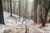 Лес прекрасен в любое время года, даже в холодном феврале. К слову в горах достаточно жарко ,особенно, когда не стоишь на месте. Опытные путешественники еще в начале похода поснимали свитера.