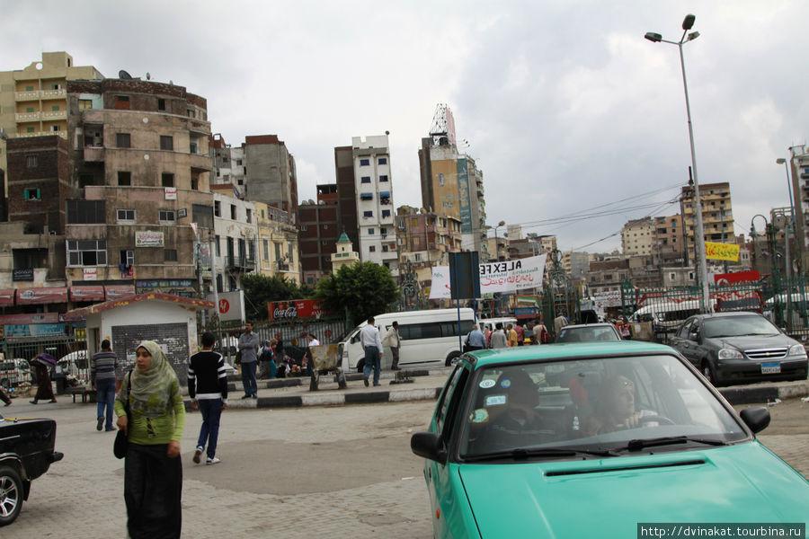 Первое, что мы увидели в Александрии