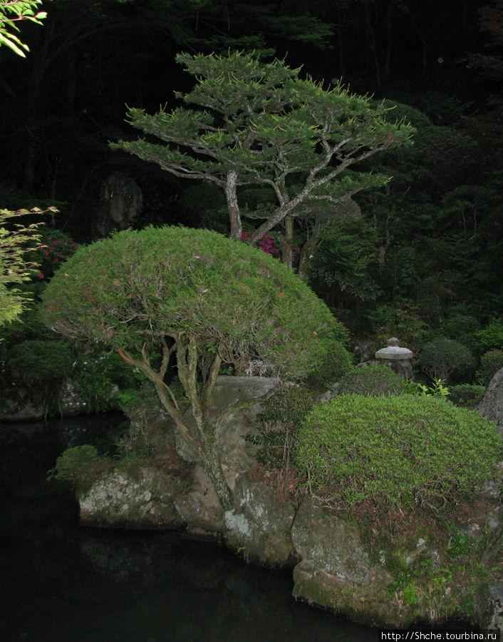 Элемент старого парка за храмом