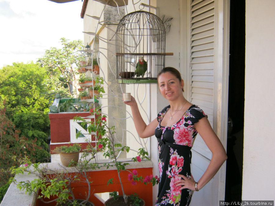 Утреннее кофе на балкрнчике в Гаване