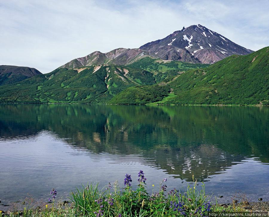 Озеро Медвежье. Северный берег. Вид на юг и вулкан Бакенинг.