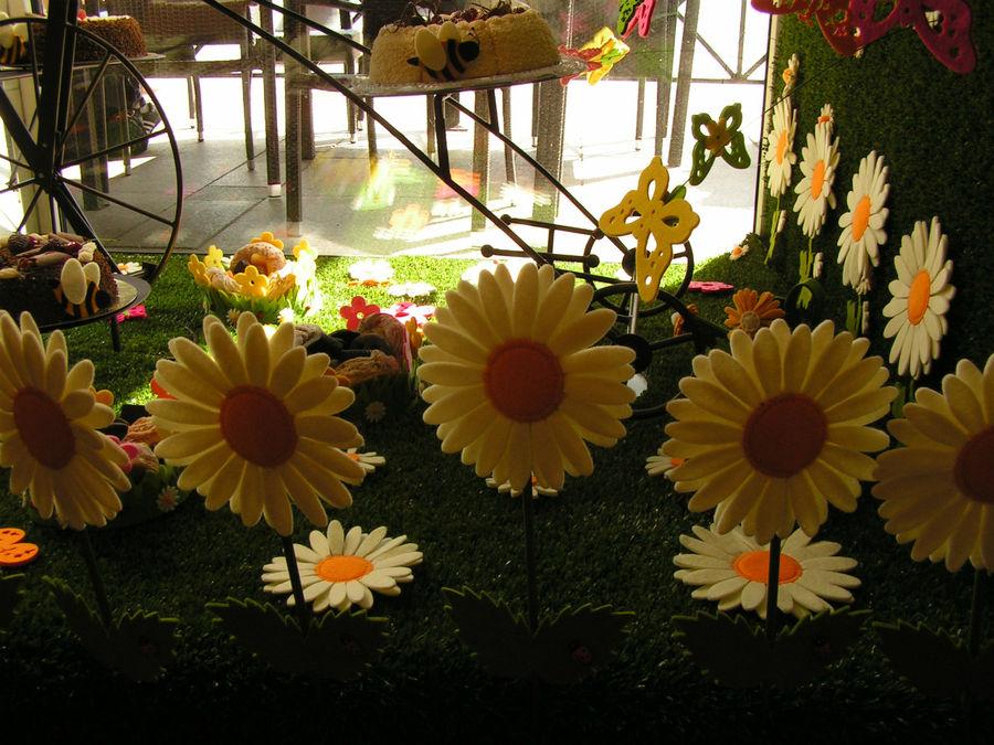 Витрины украшены летним мотивом. Каждое время года и знаменательные даты украшены по-разному. Июль 2011г.