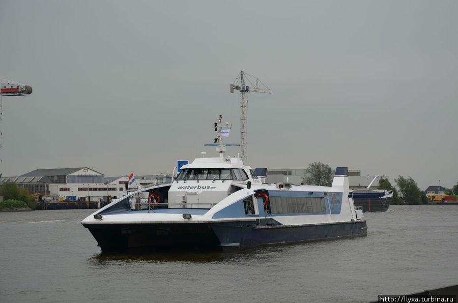 Воттербус из Роттердама