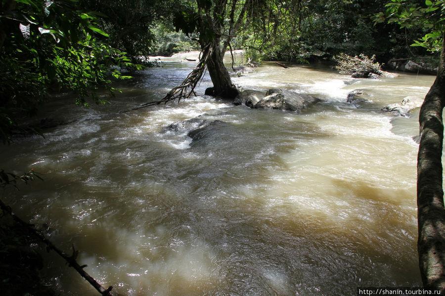 В сезон дождей воды много