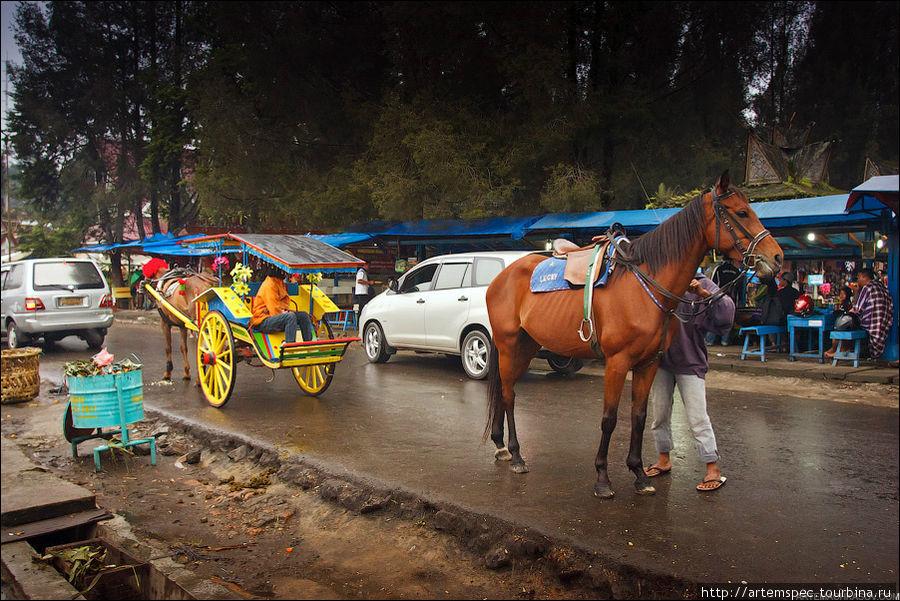 Еще один из традиционных видов транспорта — конная повозка.