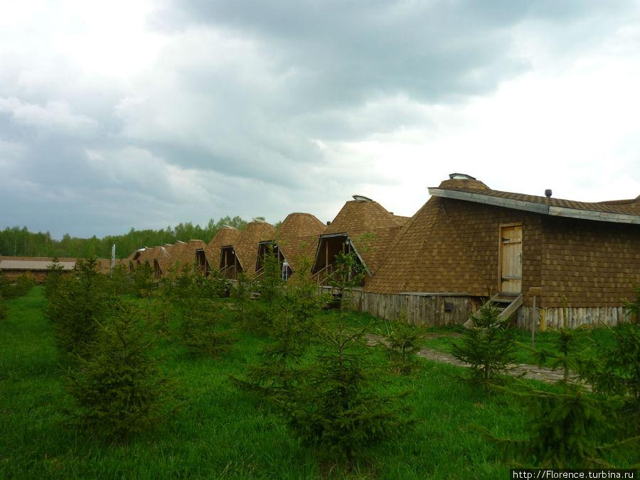 Сибирские