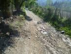дорога в объезд у озера 1