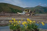 Чтобы как-то оживить сугубо индустриальный пейзаж, приходилось высаживать цветы на передний план.