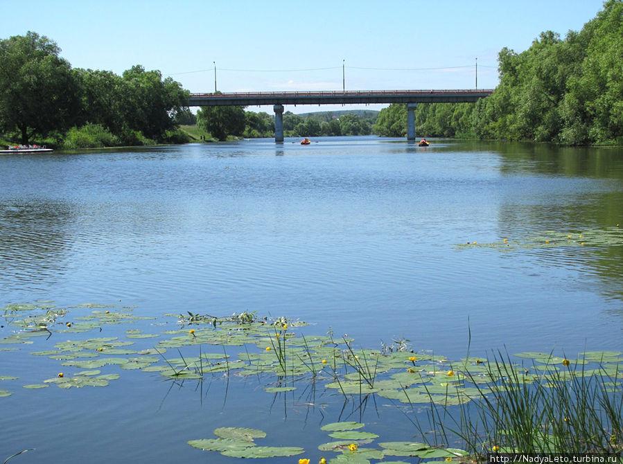 река Осетр
