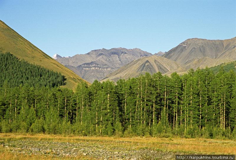 Долина Нейдагычана. По ней ведёт путь к вершине Мус-Хая.