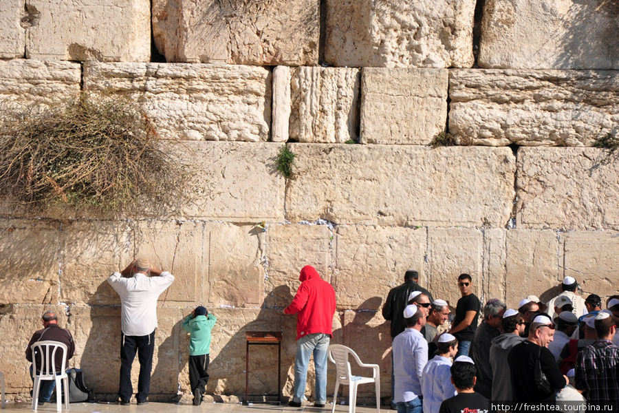 У Западной стены (стена Плача): на мужской половине
