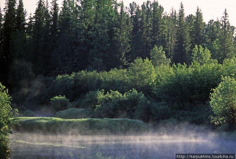 Первое утро на реке. Здесь мы построили свой катамаран. Отсюда начался наш долгий путь.