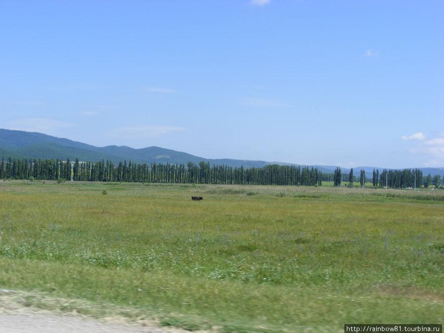 Поля Краснодарского края, дороги приятно поражают своей ухоженностью и чистотой