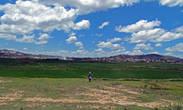 Как мы позже убедились, рисовые поля окружают весь город, местами спокойно заходя за городскую черту