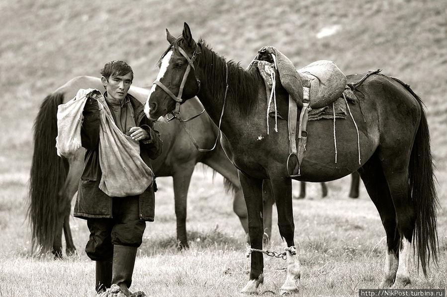 Под седлом и вьюком казахская лошадь чрезвычайно вынослива и неутомима, способна проходить в день, питаясь только пастбищным кормом, 80-90 км. Казахстан