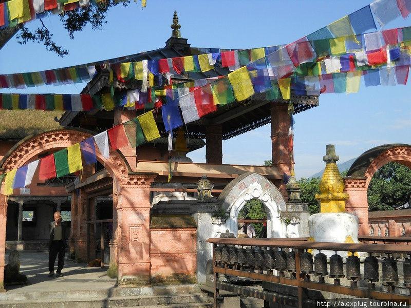 Любил добрый Будда шелест молитвенных флажков. И в награду за преданность, превратил некоторых обезьян в людей.