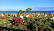 Кладбище острова Пасхи