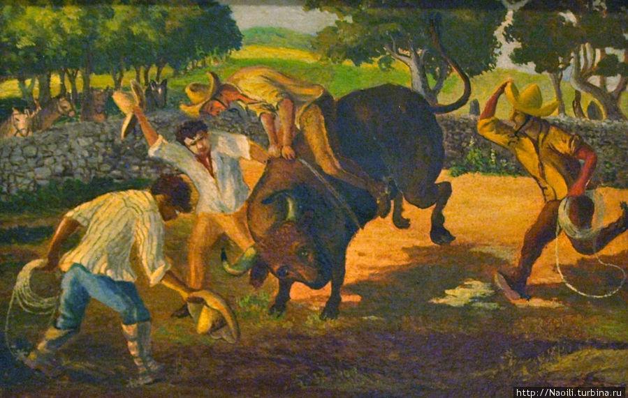 1903 Объезжать норовистых быков под свист и крики моих компаньеров было моим любимым развлечением