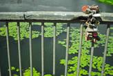 Брачные узы грузом повисли с моста над заводью.