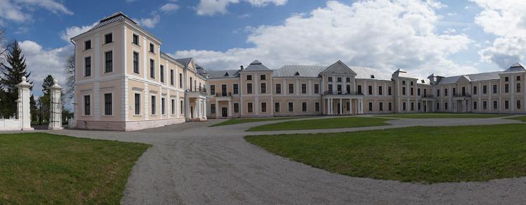Замок Вишневецких