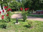 Памятник Н. В. Гоголю на левобережье (Русановка)