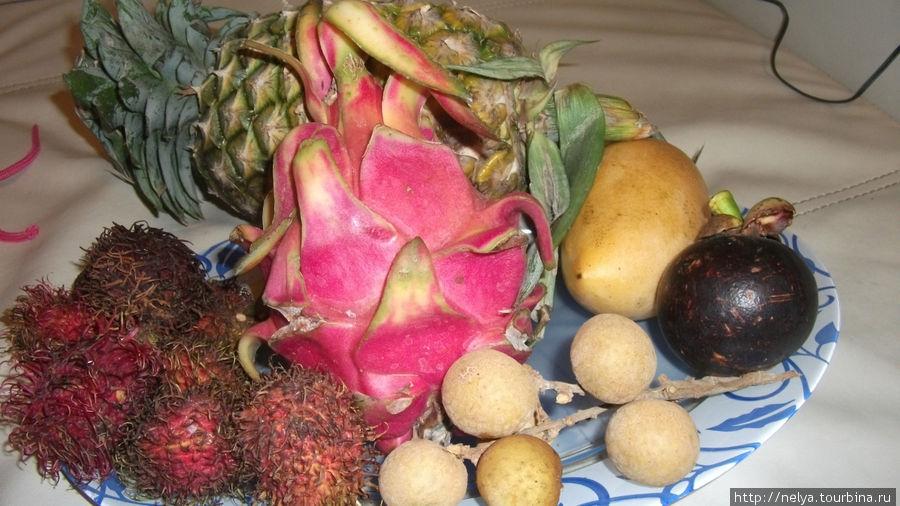 И конечно фрукты!!! Только не забывайте про перевес У трансаэро чемодан 20 кг на человека. Ручную кладь, зимние вещи никто не взвешивал, вобщем нагрузились мы по полной