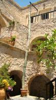 Таких овысоких кактусов я больше не видел ни где:)