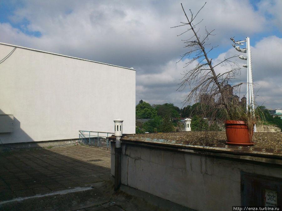 Крыша, на которую выходят окна номера-люкс