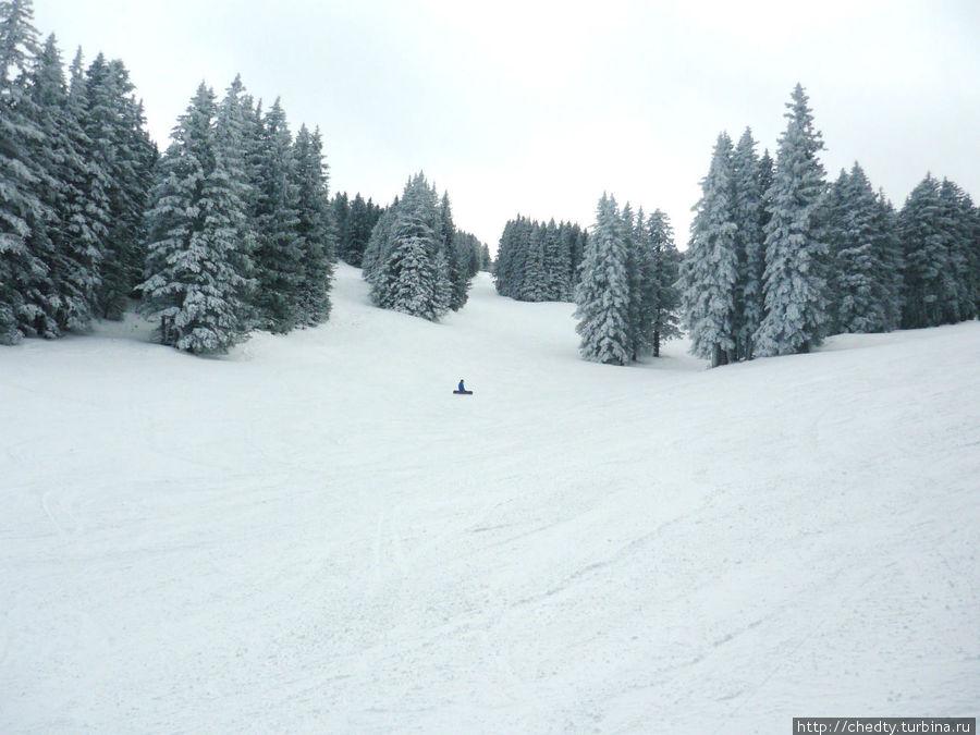 Ски Апачи