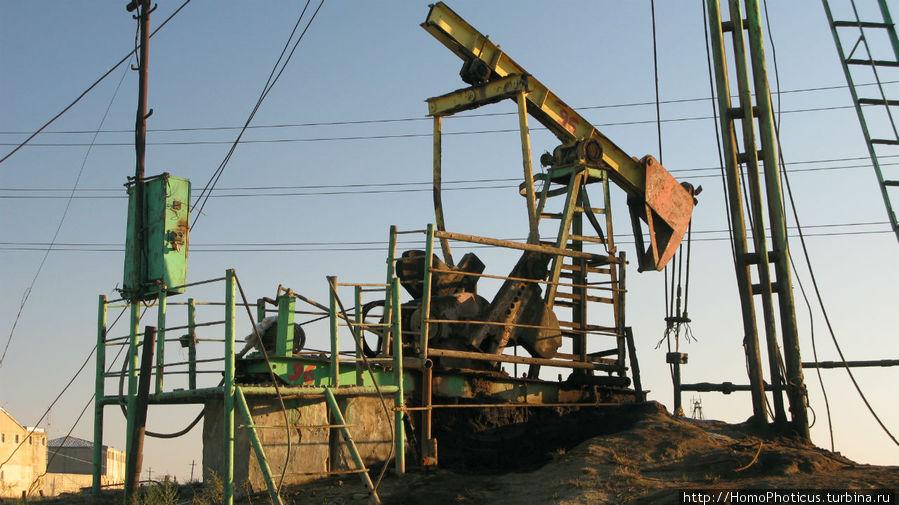 фото нефтепромысел