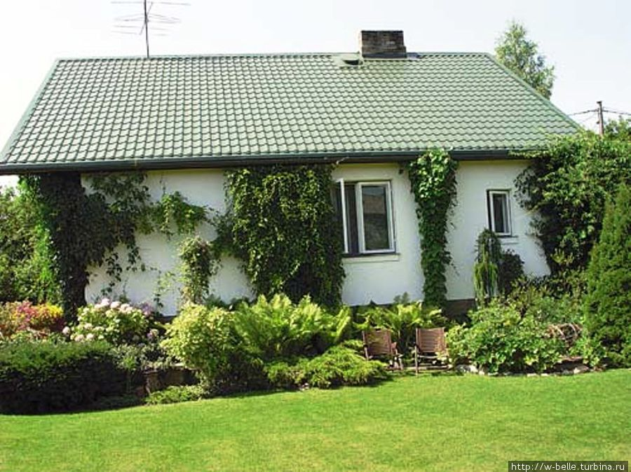 Дом — музей Петериса Упитиса, увитый диким виноградом.