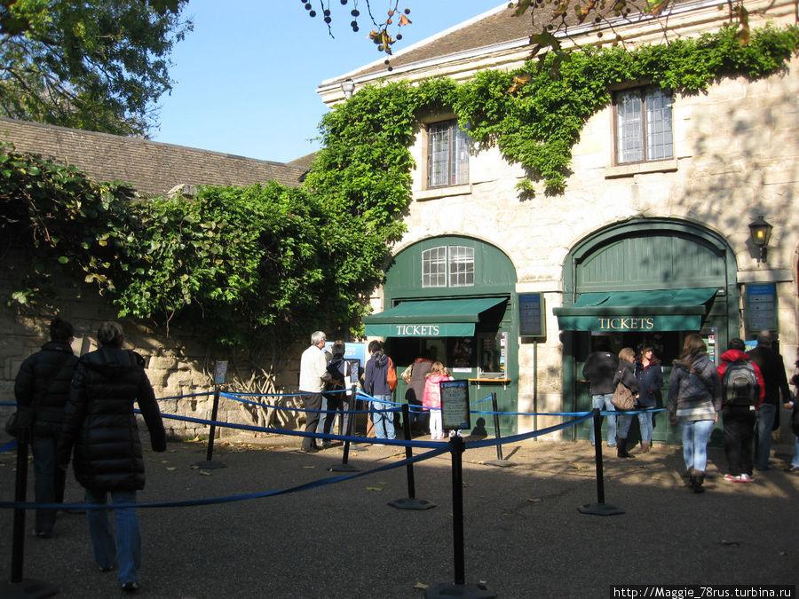 Кассы замка, где Вы можете приобрести входной билет традиционным способом.