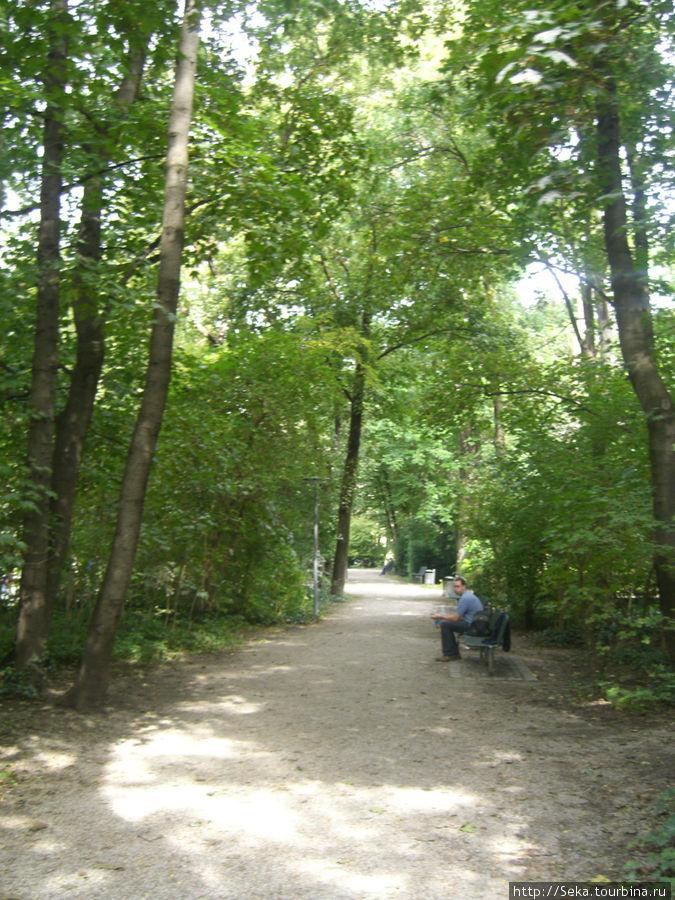 На территории Старого ботанического сада