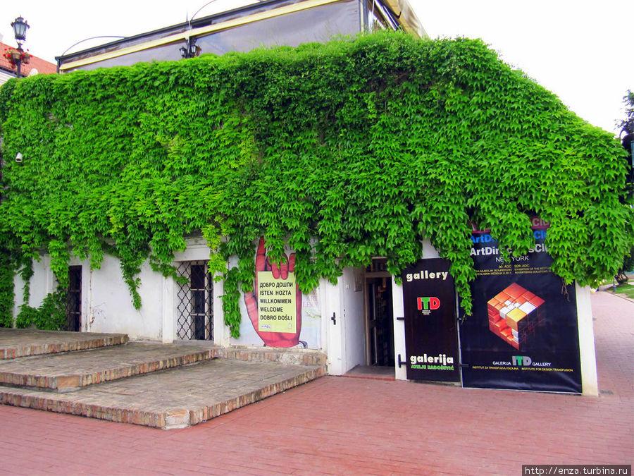 В крепости работает небольшой сувенирный магазин. Основная фишка — дизайнерские футболки с сербской и петроварадинской символикой.
