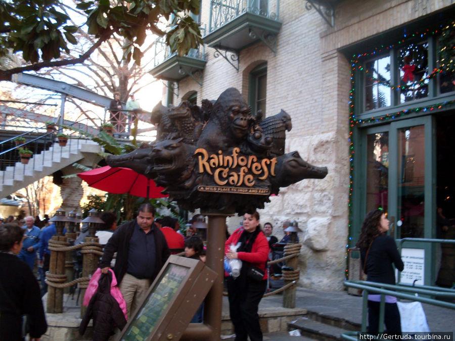Rainforest Cafe — мы хотим обедать.