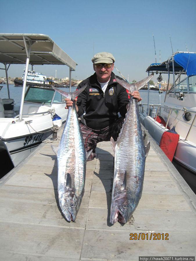 стоимость рыбалки в оаэ