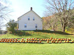 Тыквы, тыквы, тыквы. Осенняя тематика. На этой ферме для путников из тыкв выложили название штата.