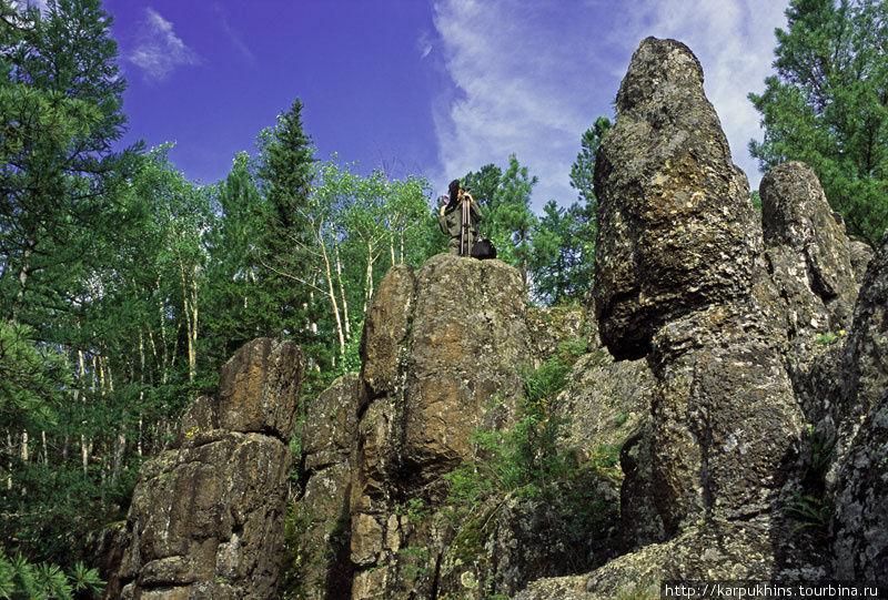 Каменные истуканы реки.